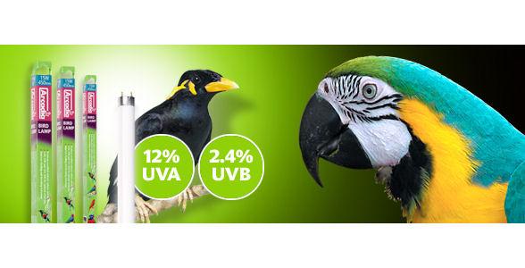 Arcadia Bird Lamp 18 Quot 450mm X 26mm 15w T8 Livefood Uk Ltd