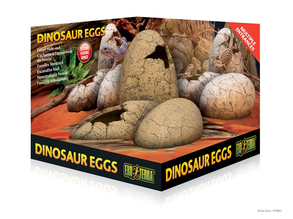 Exo Terra Dinosaur Eggs Hiding Space