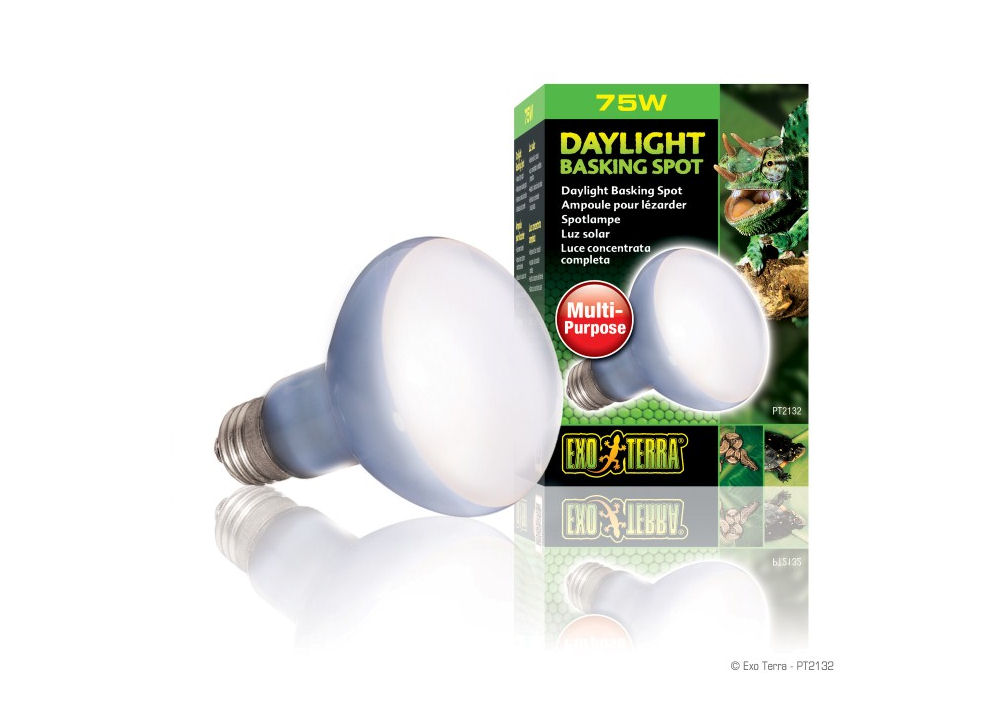 Exo Terra Daylight Basking Spot Lamp  75W