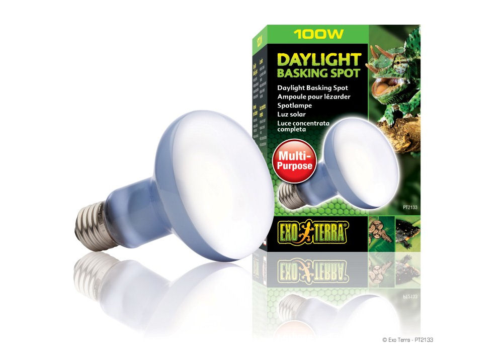 Exo Terra Daylight Basking Spot Lamp 100W