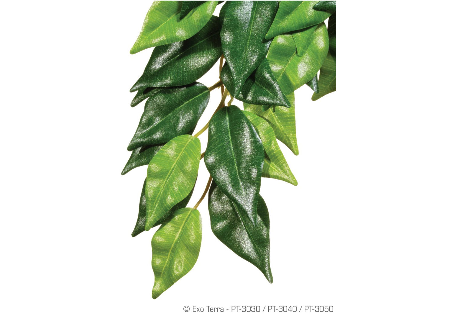 Exo Terra Hanging Rainforest Silk Plant Fiscus   Small