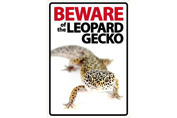 Beware of The Leopard Gecko Sign